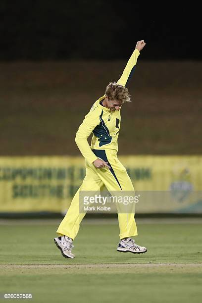 Elyse Villani of Australia celebrates taking the wicket Chloe Tryon of South Africa during the women's One Day International match between the...
