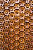 Embossed Raised Wood Carved Flowers pattern design on door panel closeup