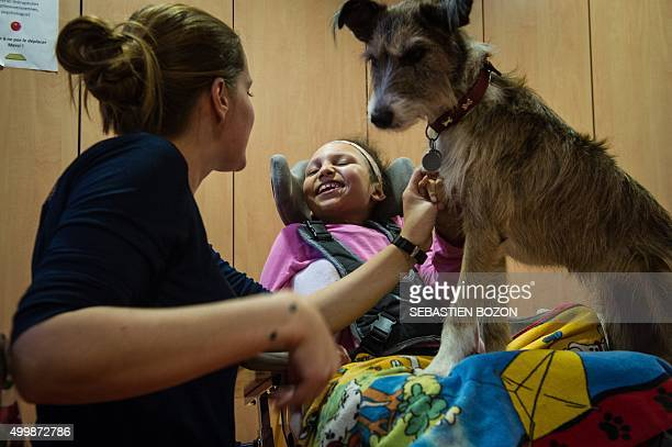 Emeline Chancel a therapist specialized in animalassisted therapy works with Chahinez a child with multiple disabilities during a session of...
