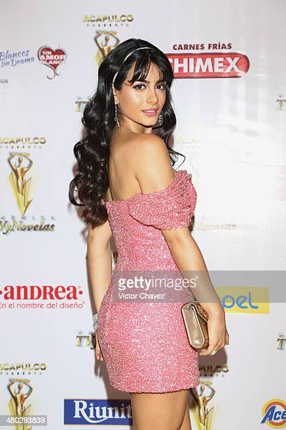 Emeraude Toubia attends the Premios Tv y Novelas 2014 at Televisa Santa Fe on March 23 2014 in Mexico City Mexico