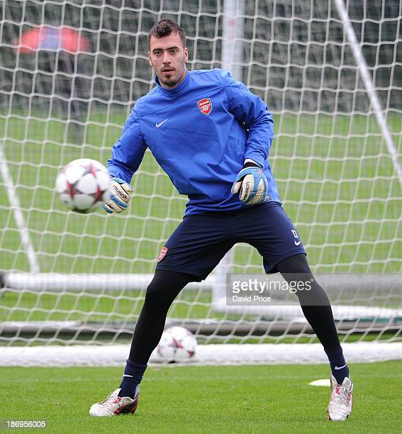 Emiliano Viviano of Arsenal during a training session at London Colney on November 5 2013 in St Albans England