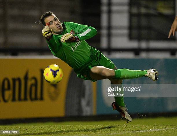 Emiliano Viviano of Arsenal during the match between Arsenal U21 and Sunderland U21 at Meadow Park on December 2 2013 in Borehamwood England