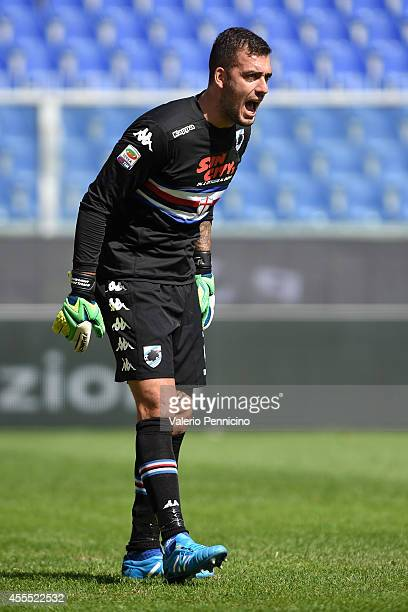 Emiliano Viviano of UC Sampdoria reacts during the Serie A match between UC Sampdoria and Torino FC at Stadio Luigi Ferraris on September 14 2014 in...