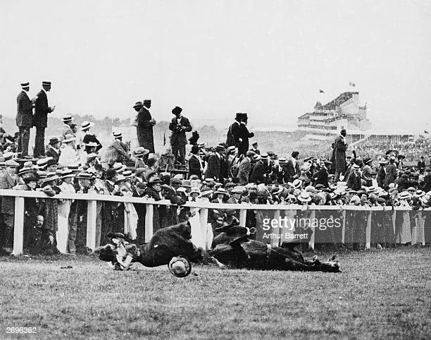 Emily Davison is fatally injured as she tries to stop the King's horse 'Amner' on Derby Day to draw attention to the Women's Suffragette movement