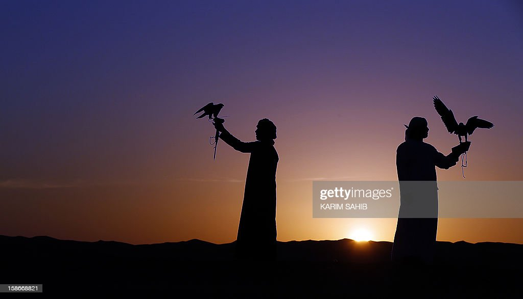 Emirati men hold their falcons at the Liwa desert, 220 kms west of Abu Dhabi, on the sidelines of the Mazayin Dhafra Camel Festival on December 23, 2012. The festival, which attracts participants from around the Gulf region, includes a camel beauty contest, a display of UAE handcrafts and other activities aimed at promoting the country's folklore.