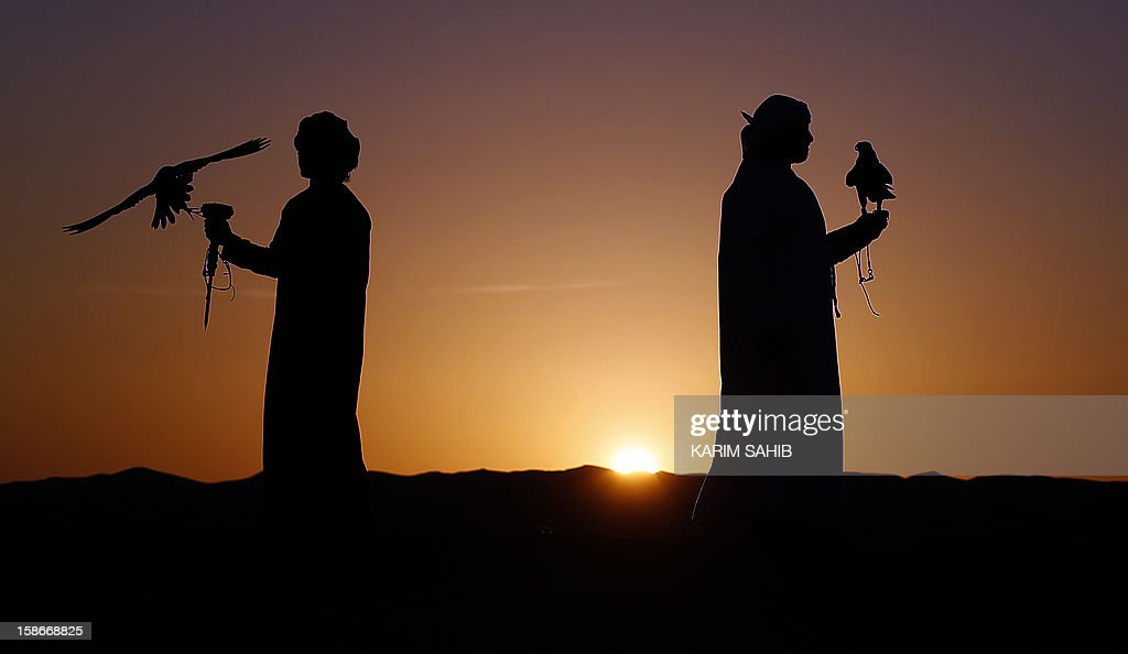Emirati men hold their falcons at the Liwa desert, 220 kms west of Abu Dhabi, on the sidelines of the Mazayin Dhafra Camel Festival on December 23, 2012. The festival, which attracts participants from around the Gulf region, includes a camel beauty contest, a display of UAE handcrafts and other activities aimed at promoting the country's folklore. AFP PHOTO/KARIM SAHIB