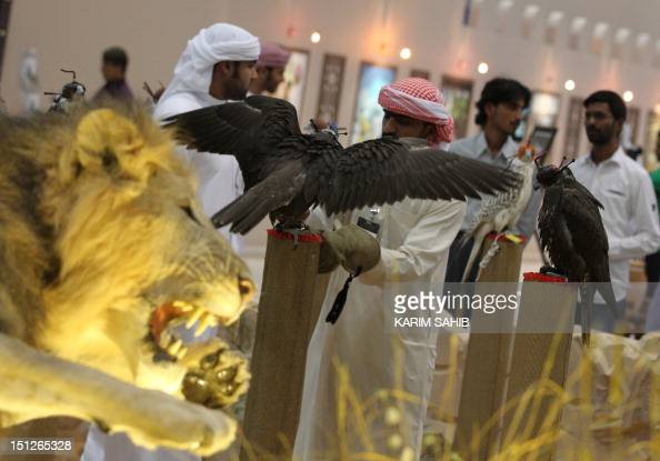 Emirati visitors look at the hunting falcons on display on September 5 on the first day of the Abu Dhabi International Hunting and Equestrian...