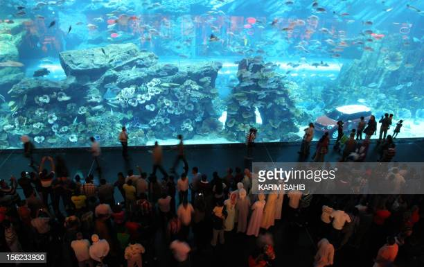 Emiratis and visitors of the Gulf emirate visit the Dubai Aquarium at a shopping mall in the United Arab Emirates on September 1 as Muslims celebrate...