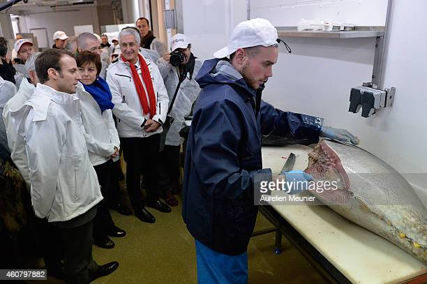 Emmanuel Macron Minister of Economics and Finances visits the Rungis International Market on December 23 2014 in Rungis France