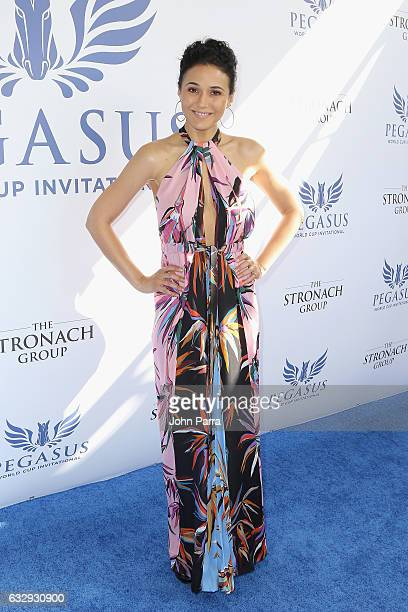Emmanuelle Chriqui attends the Pegasus World Cup at Gulfstream Park on January 28 2017 in Hallandale Florida