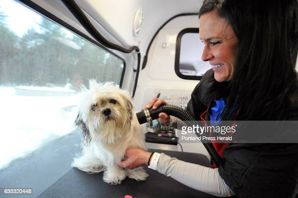 Emmy Letourneau of Aussie Pet Mobile SoCo Maine dries Rico's hair after giving him a bath in the pet mobile Wednesday February 8 2017 The work...