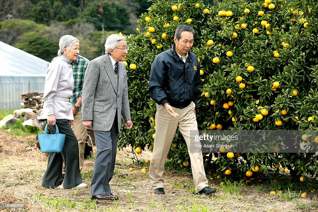 Emperor Akihito and <a gi-track='captionPersonalityLinkClicked' href=/galleries/search?phrase=Empress+Michiko&family=editorial&specificpeople=158725 ng-click='$event.stopPropagation()'>Empress Michiko</a> visit a mandarin orange farm on March 26, 2013 in Higashiizu, Shizuoka, Japan.
