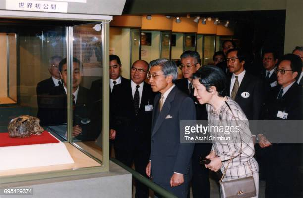 Emperor Akihito and Empress Michiko visit the 'Pithecanthropus' exhibition at the National Museum of Nature and Science on November 11 1996 in Tokyo...