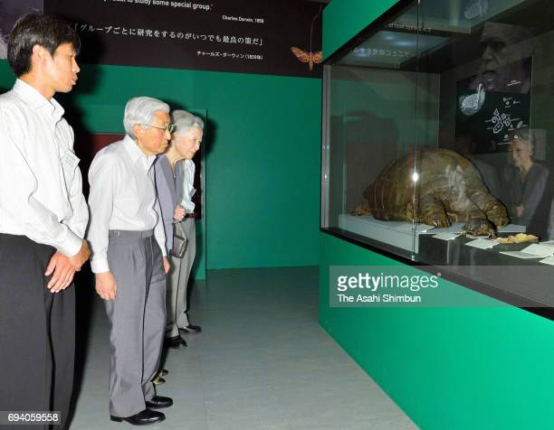 Emperor Akihito and Empress Michiko visit the 'TREASURES of the Natural World Best of London's Natural History Museum' exhibition at the National...
