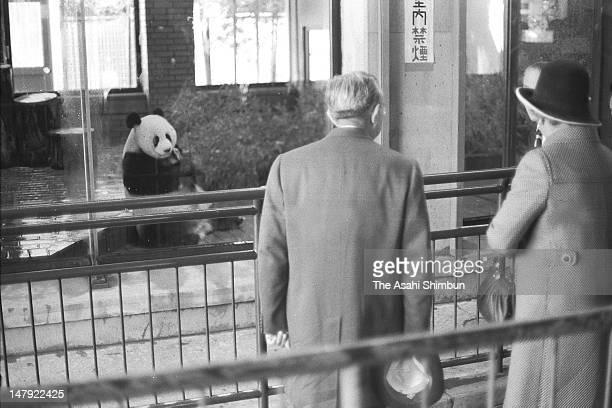 Emperor Hirohito and Empress Nagako watch giant panda at Ueno Zoo on November 26 1973 in Tokyo Japan
