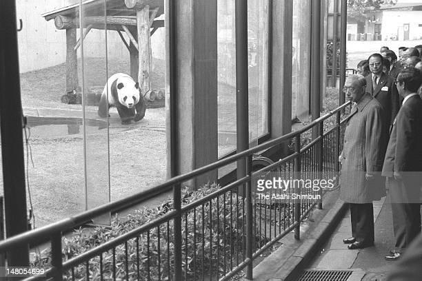 Emperor Hirohito watches giant panda Kang Kang at Ueno Zoo on November 19 1979 in Tokyo Japan