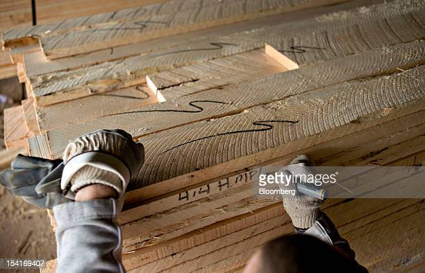 Employee Justin Gumm marks a stack of hard maple lumber after sorting at the Nicolet Hardwoods Corp lumber mill in Laona Wisconsin US on Wednesday...