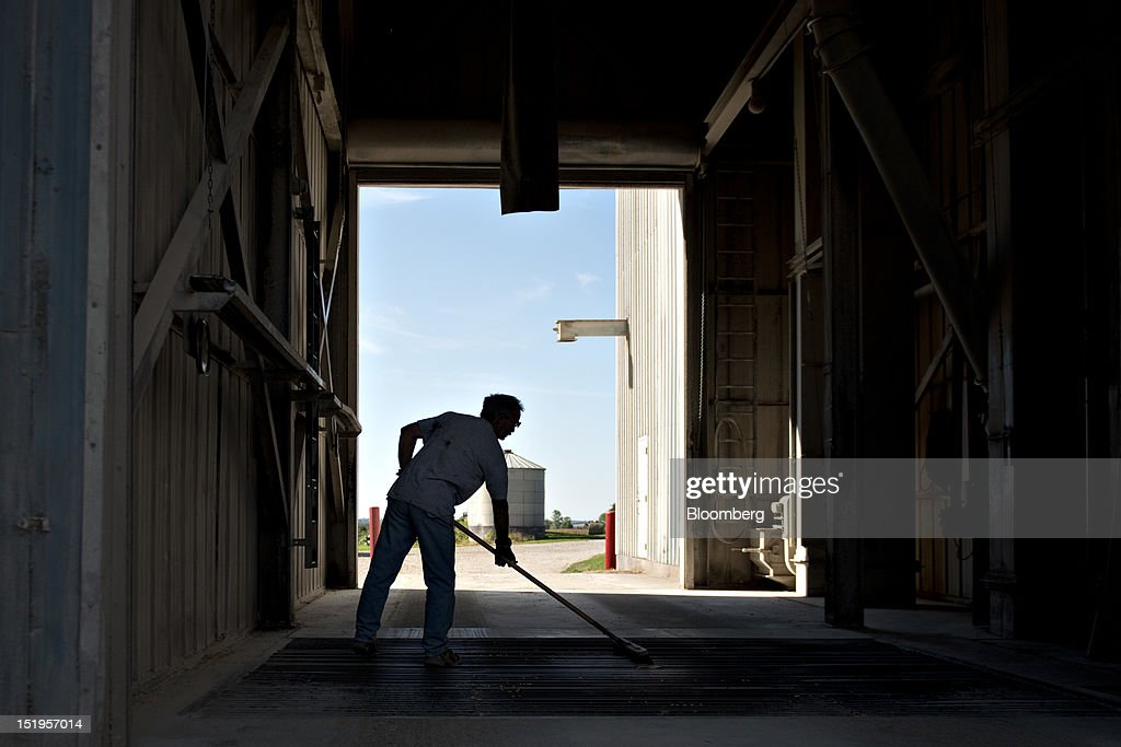Employee Phil Swanson sweeps corn from a grate following a delivery of corn at the Atherton Grain Co. Inc. elevator in Normandy, Illinois, U.S., on Wednesday, Sept. 12, 2012. The U.S. Department of Agriculture estimates for world agricultural supply and demand is bearish for corn, wheat and cotton and bullish for soybeans, according to Goldman Sachs Group Inc. Photographer: Daniel Acker/Bloomberg via Getty ImagesPhil Swanson