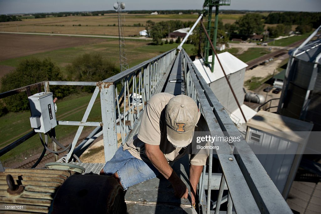 Employee Rich Carr secures a cover on an overhead conveyor belt after clearing a clog at the Atherton Grain Co. Inc. elevator in Normandy, Illinois, U.S., on Wednesday, Sept. 12, 2012. The U.S. Department of Agriculture estimates for world agricultural supply and demand is bearish for corn, wheat and cotton and bullish for soybeans, according to Goldman Sachs Group Inc. Photographer: Daniel Acker/Bloomberg via Getty ImagesRich Carr