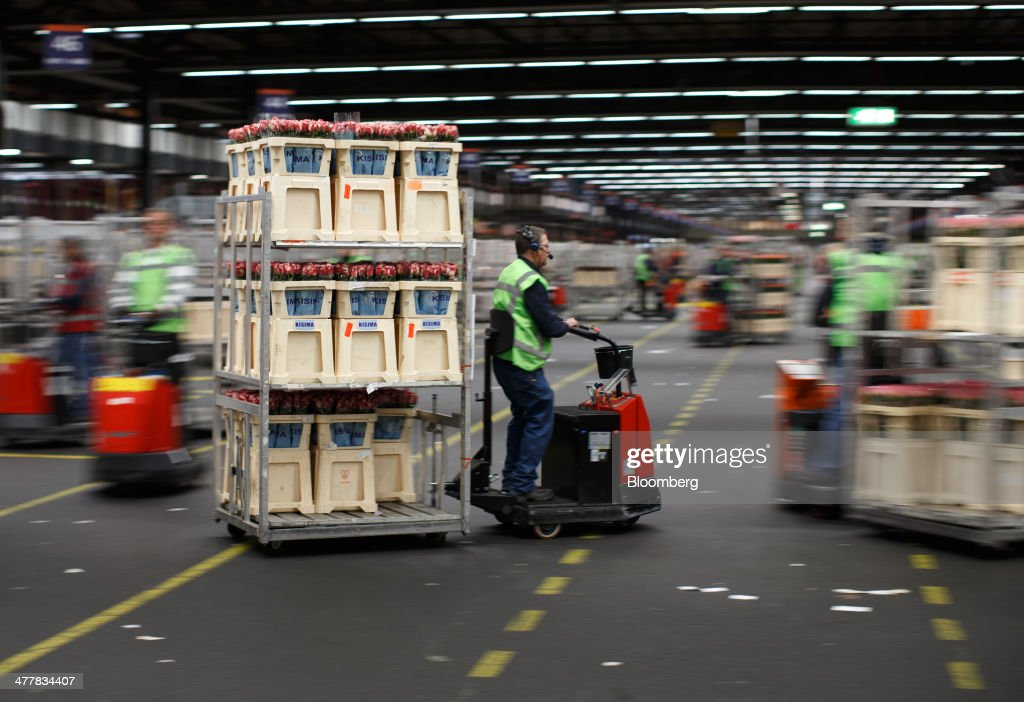 Employees drive electric carts as they transport cages of flowers at FloraHolland, the largest flower trade center in the world, in Aalsmeer, Netherlands, on Tuesday, March 11, 2014. The Netherlands' flower and plant exports, the world's biggest, fell 2.3 percent last year as declining consumer purchasing power was compounded by cold spring weather in Europe and a summer heat wave that hurt sales. Photographer: Jasper Juinen/Bloomberg via Getty Images