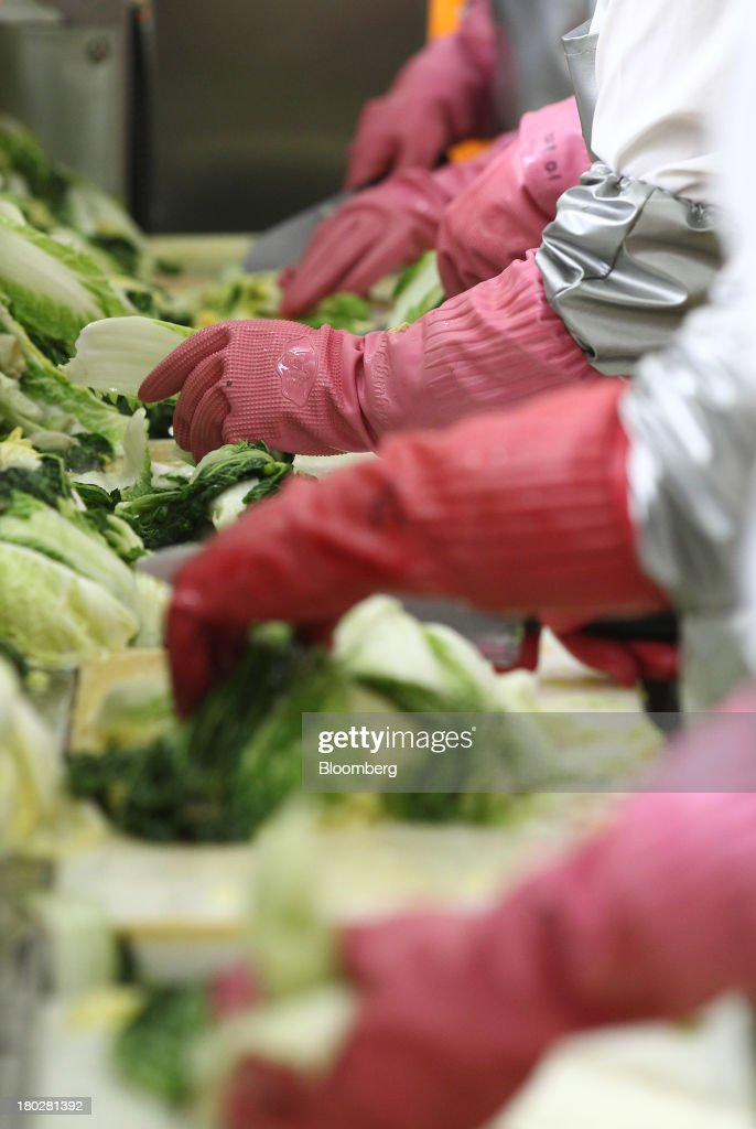 Employees handle washed cabbages on the production line at the Gamchilbaegi Co. kimchi factory in Gwangju, South Korea, on Tuesday, Sept. 10, 2013. Gross domestic product rose 1.1 percent in the second quarter from the preceding three months, the most in more than two years, central bank data showed Sept. 5. Photographer: SeongJoon Cho/Bloomberg via Getty Images