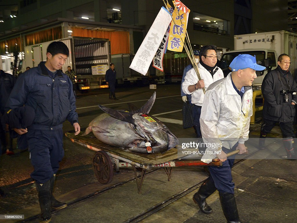Employees of sushi restaurant chain Sushi-Zanmai carry a 222kg bluefin tuna from Tokyo's Tsukiji fish market to the restaurant on January 5, 2013. The bluefin tuna was traded at 155.4 million yen (1.77 million USD) at the wholesale market, smashing a previous record. AFP PHOTO / Yoshikazu TSUNO