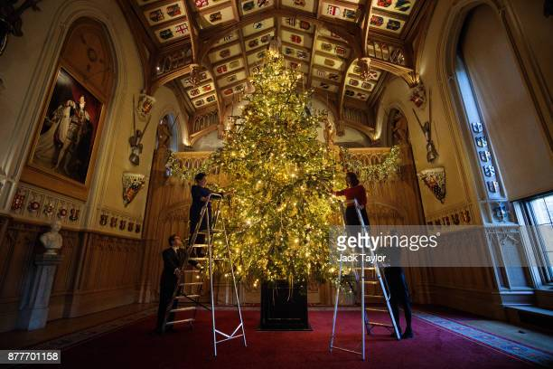 Employees pose with a 20ft Nordmann Fir tree from Windsor Great Park in St George's Hall which has been decorated for the Christmas period on...