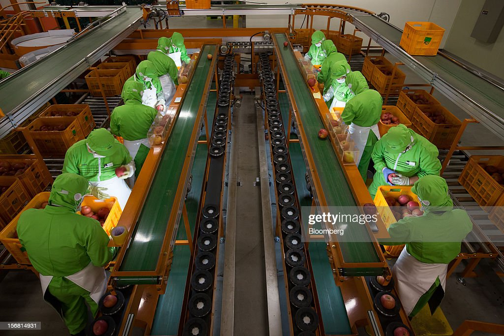 Employees sort apples at the E-Mart Co. Fresh Center, a sorting facility, in Icheon, South Korea, on Wednesday, Nov. 21, 2012. South Korea's household debt rose to a record in the third quarter as borrowing increased to finance homes and consumption. Photographer: SeongJoon Cho/Bloomberg via Getty Images
