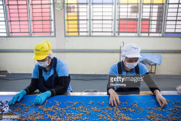 Employees sort garlic at the Nithi Foods Co factory in the San Pa Tong district of Chiang Mai Thailand on Tuesday May 23 2017 Thailand's consumer...