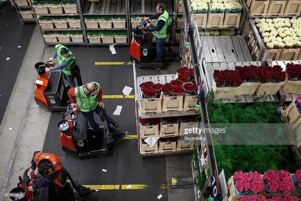 Employees use electric carts as they prepare to transport flowers at FloraHolland, the largest flower trade center in the world, in Aalsmeer, Netherlands, on Tuesday, March 11, 2014. The Netherlands' flower and plant exports, the world's biggest, fell 2.3 percent last year as declining consumer purchasing power was compounded by cold spring weather in Europe and a summer heat wave that hurt sales. Photographer: Jasper Juinen/Bloomberg via Getty Images