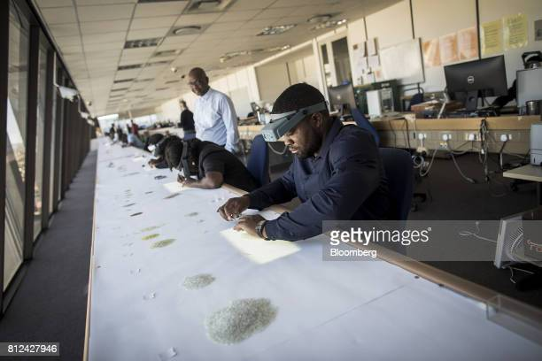 Employees use natural daylight to illuminate rough diamonds during the sorting process at the Namibian Diamond Trading Co diamond processing and...