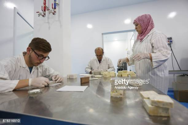 Employees work at the Palestinian House of Soap SIBA' founded by Palestinian entrepreneur Ihlas Savalih in Jericho West Bank on November 24 2017...