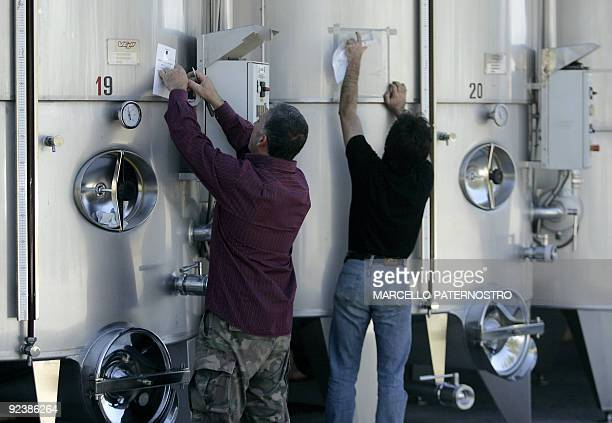 Employees work in the wine cellar of the 'Centopassi' factory in San Cipirello on October 27 2009 during the official opening ceremony Libera an...