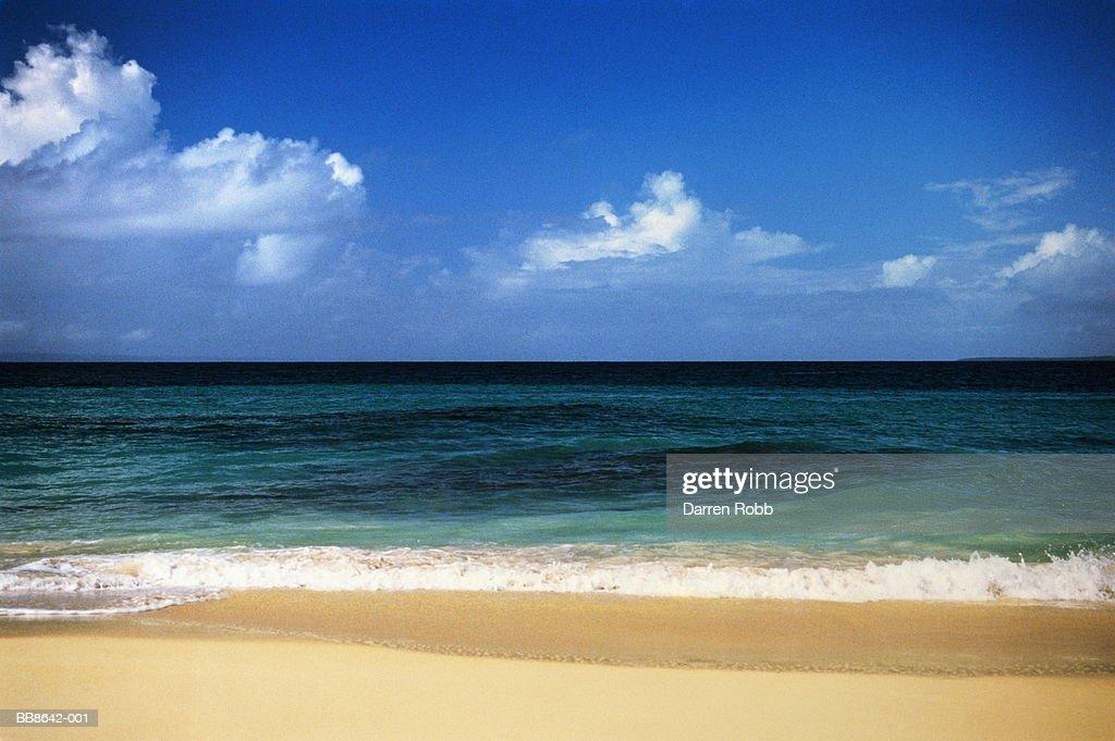 Empty beach and seascape, Dominican Republic : Stock Photo
