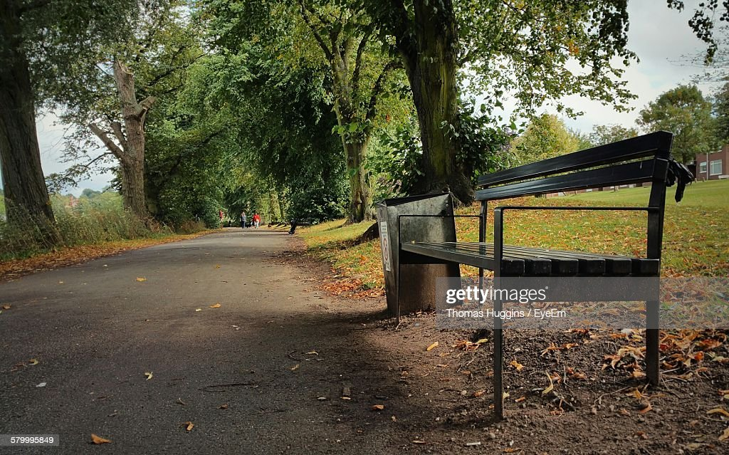 Empty Bench Amidst Road And Park