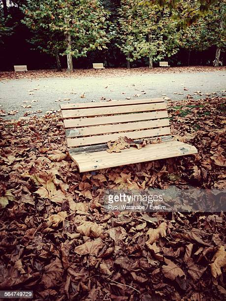 Empty Bench And Dry Leaf In Park
