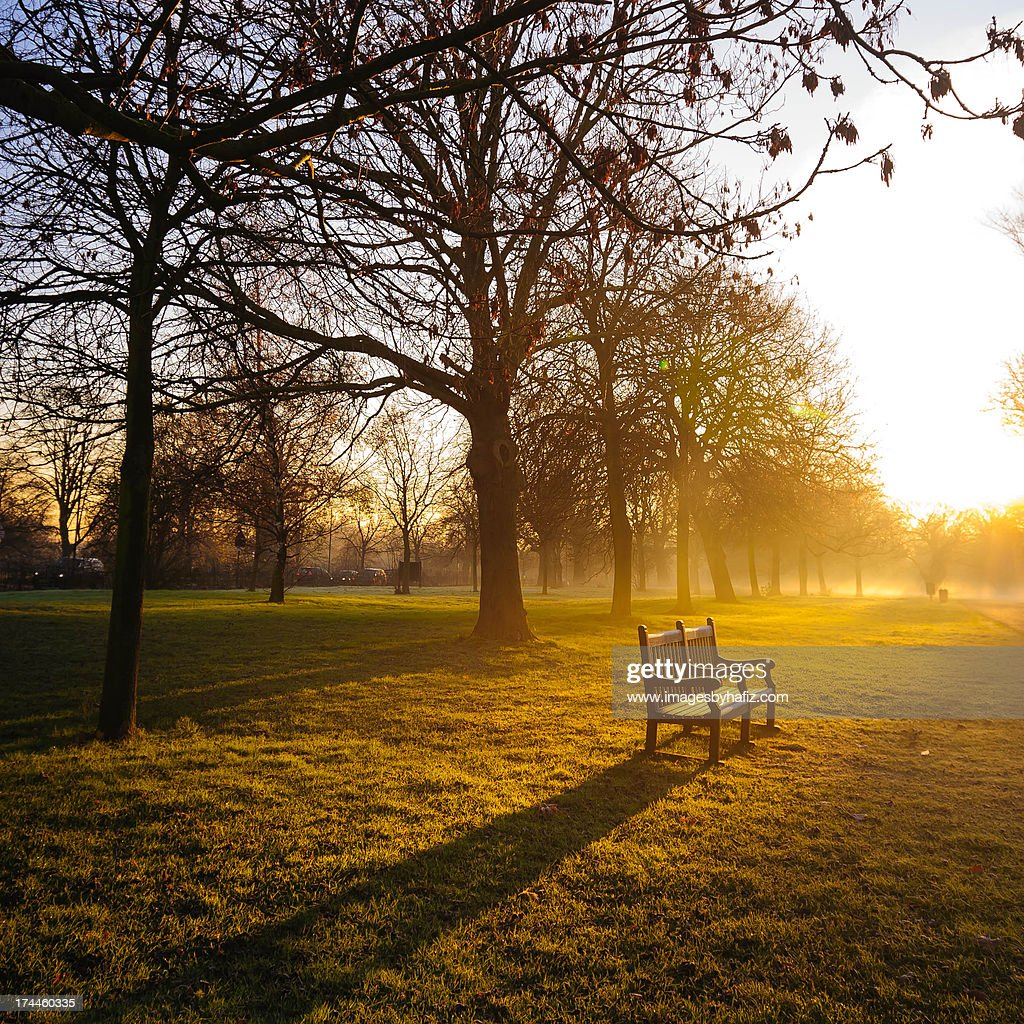 Empty Bench and Golden Winter Sunrise : Stock Photo