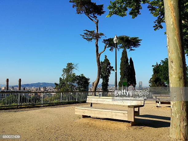Empty Bench With Trees Against Blue Sky
