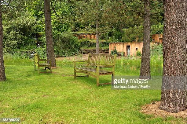 Empty Benches On Grassy Field In Park