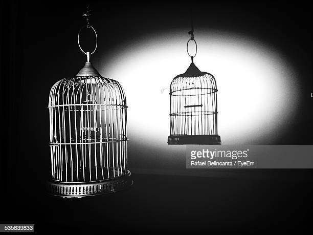 Empty Bird Cage And Its Shadow On Wall