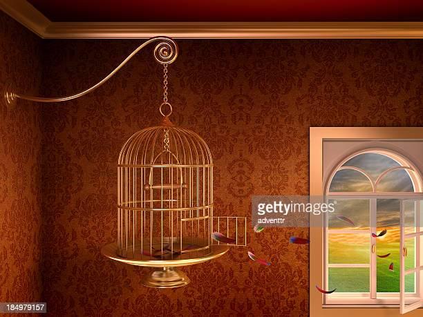 Empty birdcage