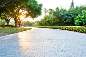 Empty brick road in the park.