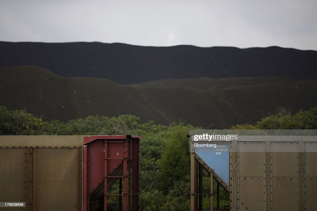 Empty coal hoppers sit on a railroad siding near the Tennessee Valley Authority Paradise Fossil Plant in Paradise, Kentucky, U.S., on Tuesday, Aug. 13, 2013. The plant generates and delivers 14 billion kilowatt-hours of coal-fired electricity per year to Western Kentucky and Nashville, Tennessee. Photographer: Luke Sharrett/Bloomberg via Getty Images