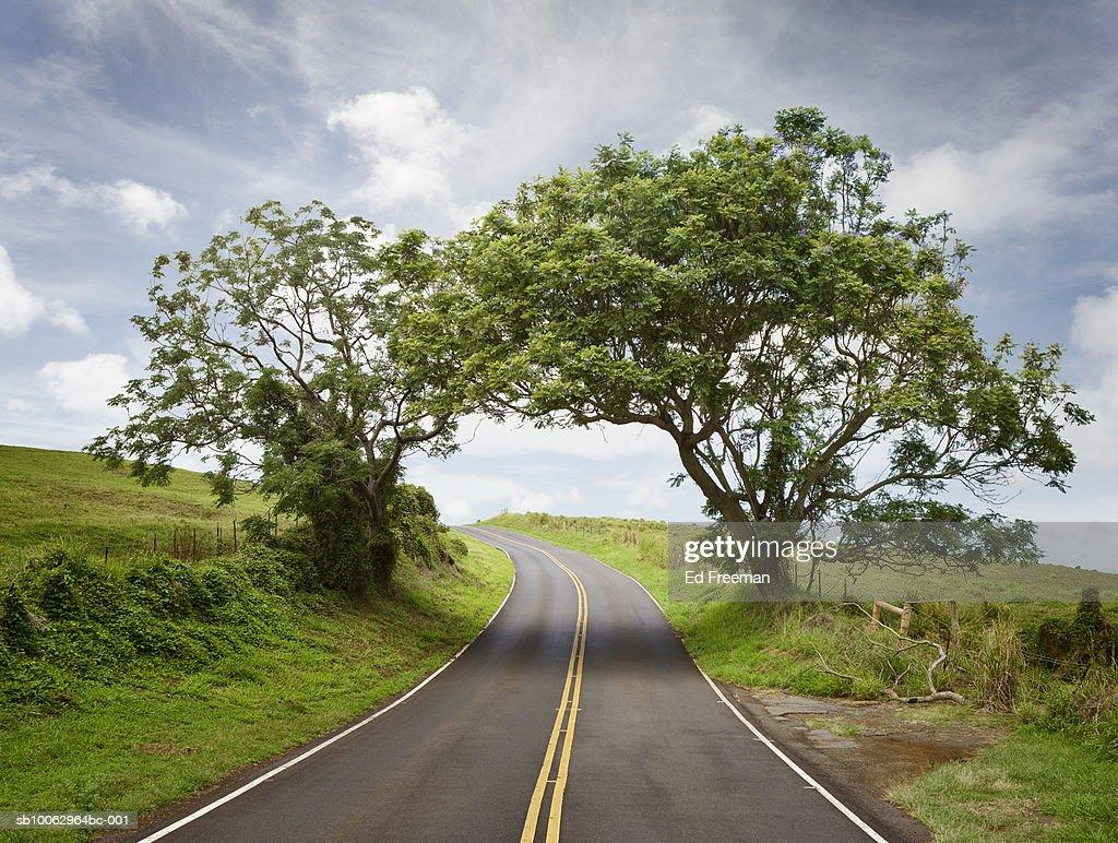 Empty country road : Stock Photo