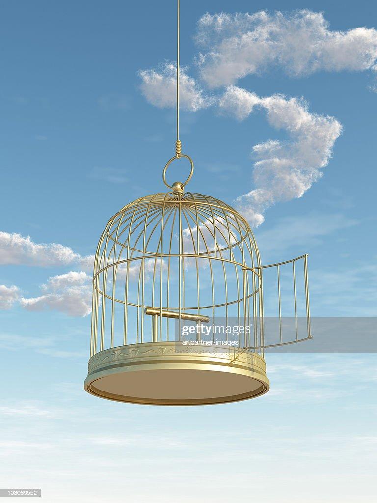 Empty Golden Birdcage with Open Door : Stock Photo