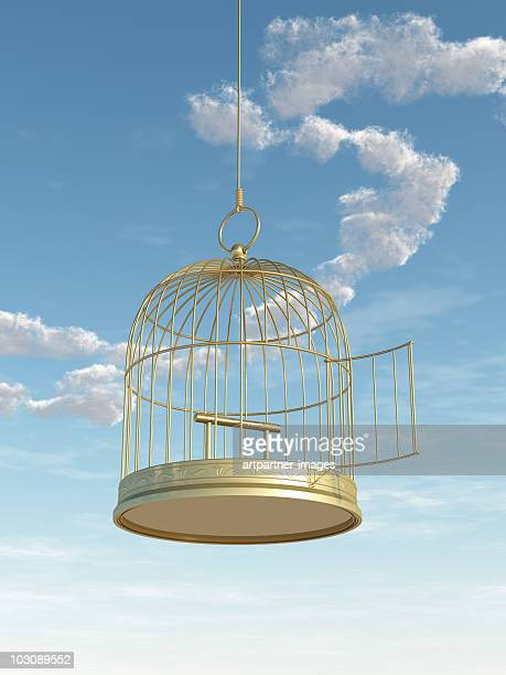 Empty Golden Birdcage with Open Door