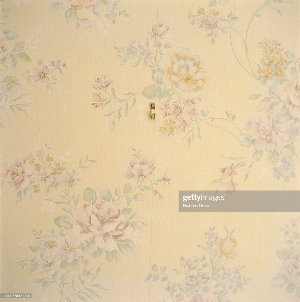 Empty hook on floral papered wall, close-up : Stock Photo