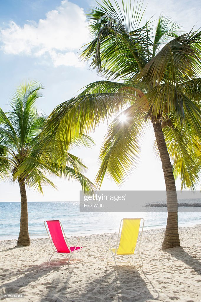 Empty loungers on sandy beach : Stock Photo