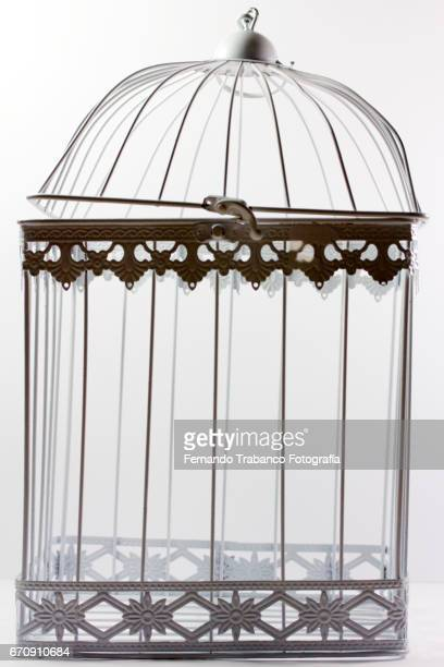 Empty metal cage on white background. Loneliness, nobody, emptiness, freedom.