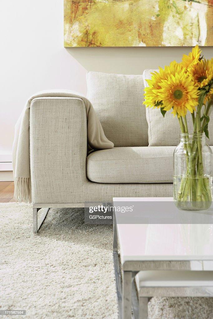 Vide salle de séjour moderne : Photo